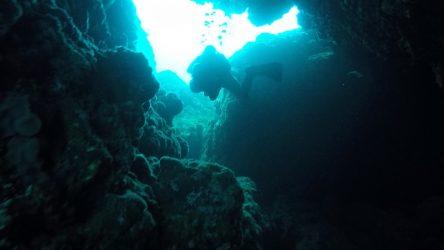 Shallow Reef Sekotong