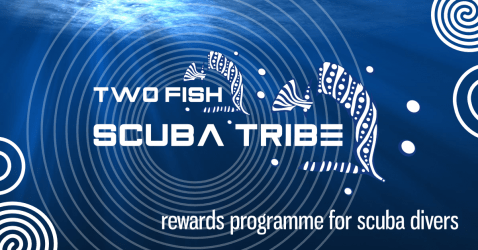 Scuba Tribe 1200x628 rewards for divers