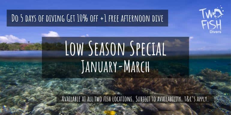 Diving Indonesia Low season special 2020