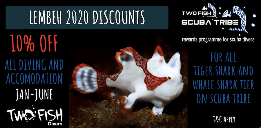 Lembeh Discounts