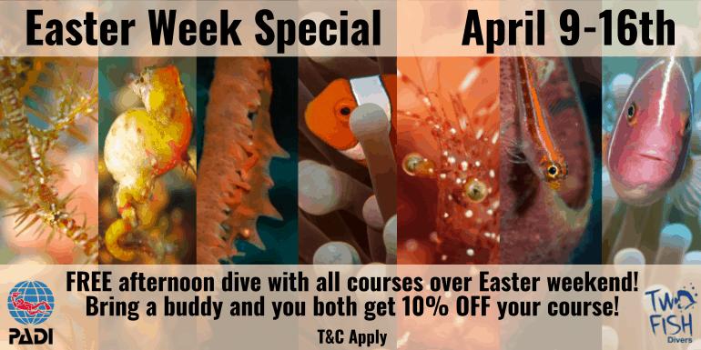 Easter Week Special 2020